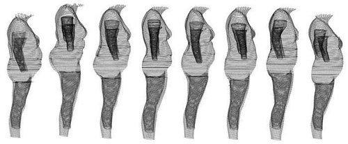 Одинаковый индекс массы тела