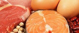 Рецепты белковой диеты для похудения