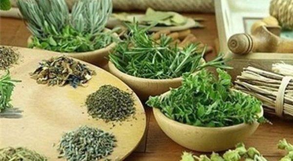 Рецепты трав для очищения организма, а также ежедневных блюд вашей кухни.
