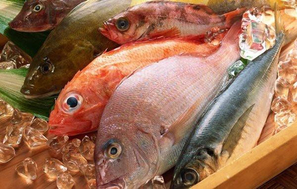 Рыба - польза и вред