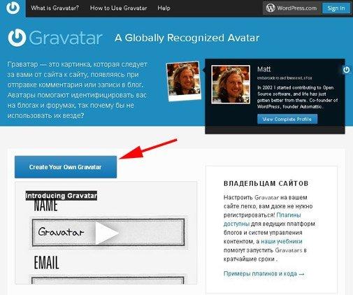 Скриншот Граватар1