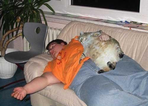 Лечение ожирения - люди и животные