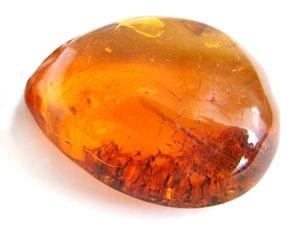 Изображение - Камень который лечит суставы yantar