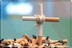 Бросить курить и не набрать вес - продукты, помогающие бросить курить и не поправиться