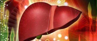 15 способов восстановления печени для крепкого здоровья
