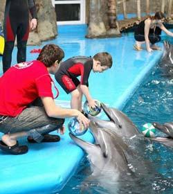 дельфинотерпия дети