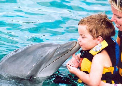 Дельфинотерапия и дети