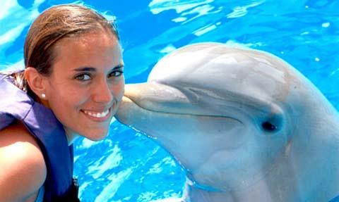 дельфинотерапия здоровье
