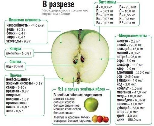 состав и польза яблок