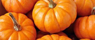 Осенняя красавица тыква. Поговорим о пользе и вреде тыквы