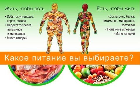 Конкретное меню для похудения на 10 кг за месяц в домашних условиях