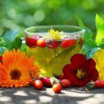 Травы и чаи для лечения и очищения нашей печени