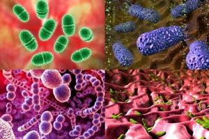 о очищение от паразитов народными способами