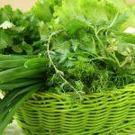 Витамин К1: свойства и особенности, источники в продуктах, симптомы избытка и недостатка