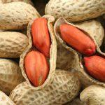 Польза и вред арахиса: состав, калорийность, правила хранения и выбора