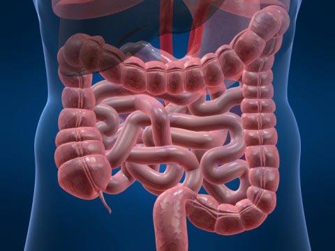 Синдром раздраженного кишечника - лечение