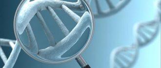 Какие болезни передаются по наследству?