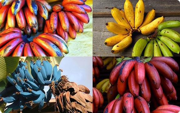 Цвета бананов