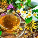 Какие травы спасают от кашля? Эффективные рецепты при сухом и мокром кашле