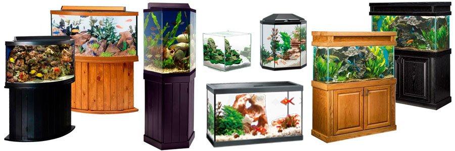 Виды аквариумов по форме конструкции